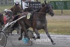 Catch Me A winner  - Foto: René Lind Gammelmark