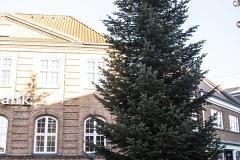 Juletræet bliver leveret på Torvet - 26. november 2018